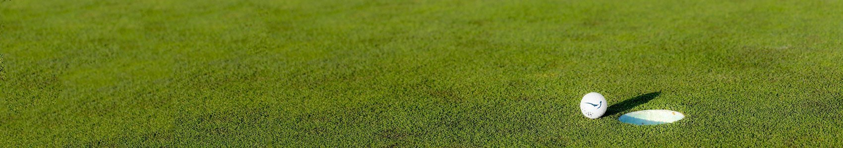 golf ball hole