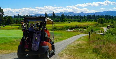 golf carts and rollover protection regulation amendments