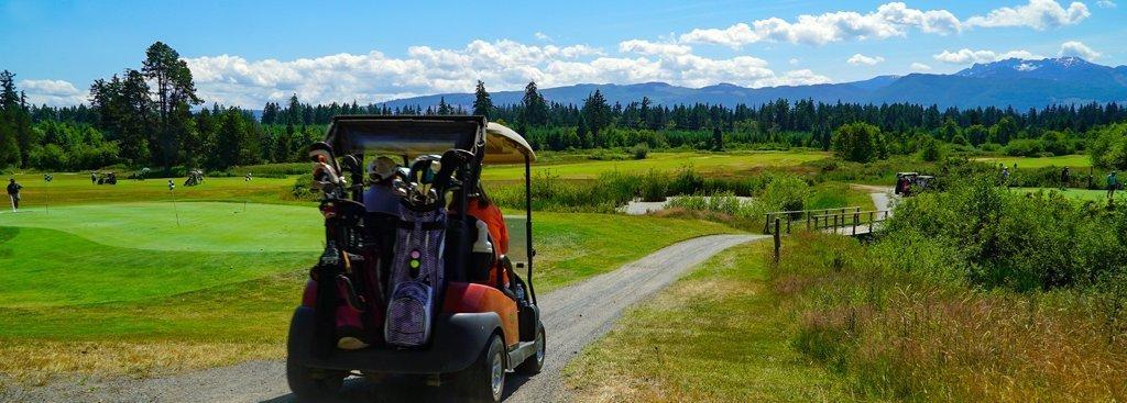 golf carts and rollover protection regulation amendments